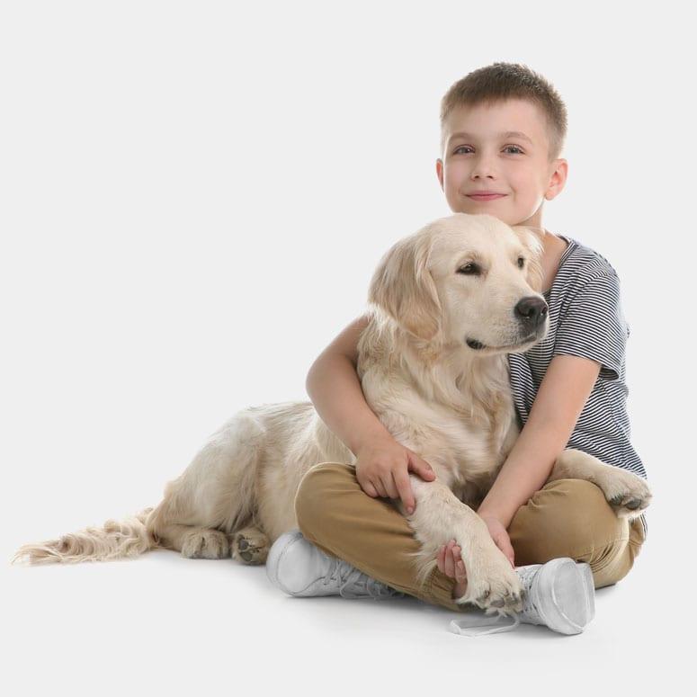 We Train Many Service Dog Skills